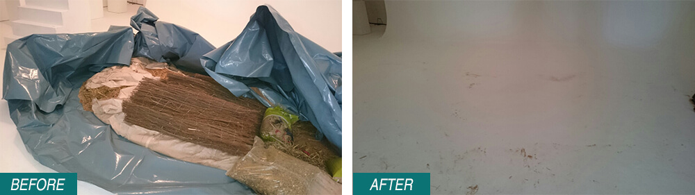 House Waste Disposal SW1 Before After Photo